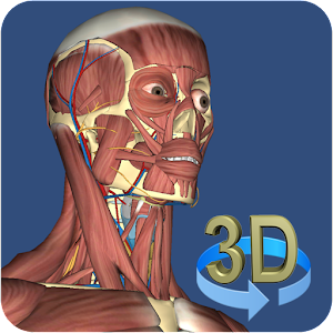 Download 3D Anatomy APK