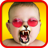 Free Face Fun - Photo Collage Maker APK for Windows 8
