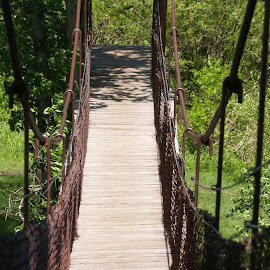 by Todd Yonkers - Transportation Other ( nature, creative, rope bridge, path, bridge )