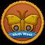 Moth Week 2013