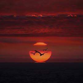 Sunset by Stefania Loriga - Landscapes Sunsets & Sunrises