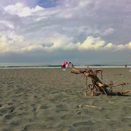 jatimalang by Edi Waluyo - Landscapes Beaches ( sand, beaches, beautiful beach, beach, jatimalang beach, jatimalang )