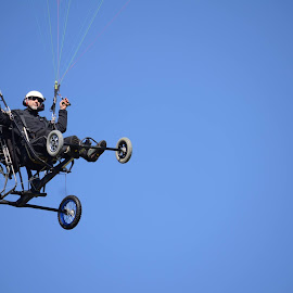 Motorized Paragliders by Karina Cove - Transportation Other
