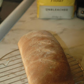 Bread by Laurie Voyer - Food & Drink Cooking & Baking ( bakery, food, bread, food photography, cooking )