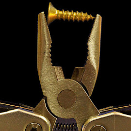 Jaws screwed by Gaylord Mink - Artistic Objects Industrial Objects ( leatherman, screw, object, pliers, jaws )