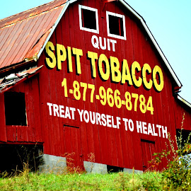 Quit Spit Tobacco !! by Linda Blevins - News & Events Health