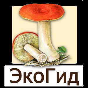 Cover art EcoGuide: Russian Fungi