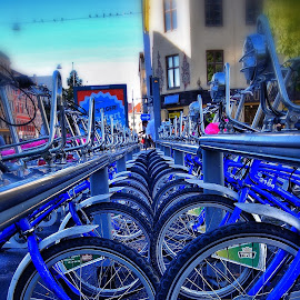 by Jose Figueiredo - Transportation Bicycles ( oslo, rent, bicycle )