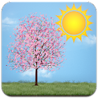 Lonely Cherry Blossom Tree LW icon
