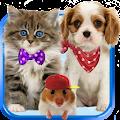 App Talking cat. Talking puppy. APK for Windows Phone