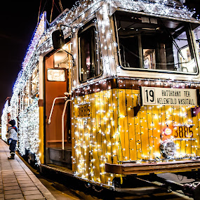 Christmas Light Tram by Péter Nagy - Transportation Other ( budapest, christmas, tram )