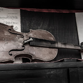 The Forsaken by Bogdan Rusu - Artistic Objects Musical Instruments ( violin, still life, museum, artistic objects, notes )