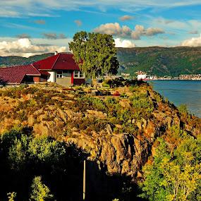 Summer in Bergen by Inna Cleanbergen - Landscapes Mountains & Hills ( everydaybergen bergen )