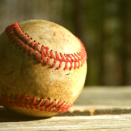 Baseball by Jarrod Elliott - Sports & Fitness Baseball ( nature, wood, worn, baseball, table,  )