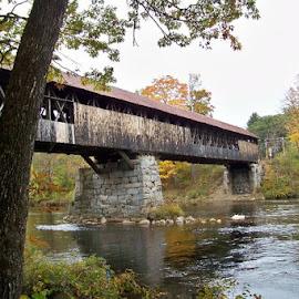Blair Bridge by Dano Blair - Buildings & Architecture Bridges & Suspended Structures