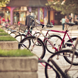 Bike parking by Zec Mladen - Transportation Bicycles ( bicycles, street, bicycle )