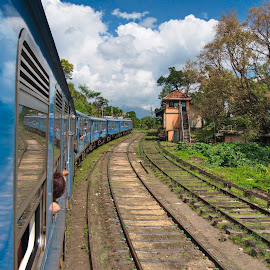 the train by Dan Baciu - Transportation Trains ( railway, transport, railroad, train, india, postal services, sri lanka, transportation, reflexions, reflexion, trains )
