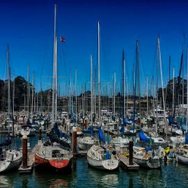 The Harbor by Rachel Santellano - Instagram & Mobile Android ( hdri, harbor, hdr, california, boats, transportation, santa cruz, boat )