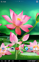 Screenshot of Lotus Live Wallpaper