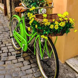 A Road to Nostalgia  by Nicole Radlow - Transportation Bicycles ( bike, rome, green, streets, nostalgia, childhood, flowers, pretty, italy, cobblestone,  )