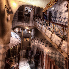Gaudi's Casa Batllo by Catchlights Fotografie - Buildings & Architecture Other Interior ( batllo, gaudi, casa, architectural detail, architecture )