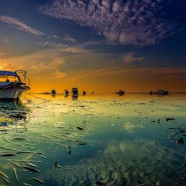 Front by Choky Ochtavian Watulingas - Landscapes Sunsets & Sunrises ( clouds, seaweeds, boats, reflections, seascape, sunrise, sun )
