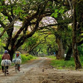 go home by Kawan Santoso - Transportation Bicycles