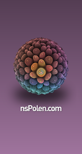 NS Polen - screenshot
