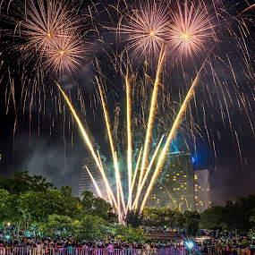 Fireworks by Alex Shanti - Public Holidays New Year's Eve ( klcc, celebrations, fireworks, malaysia, ny, , vertical lines, pwc )