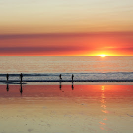Cable beach sunset by Allieca Paterson - Landscapes Waterscapes ( water, broome, silhouette, sunset, australia, beach, cable beach, western australia )