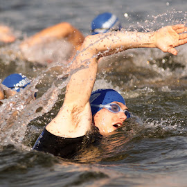 Tri-athlete by Dave Hollub - Sports & Fitness Swimming (  )