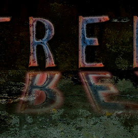 free by Dietmar Kuhn - Typography Words ( reflection, text, color, texture, moody, word )