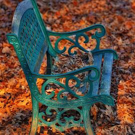 by Jeff Fox - City,  Street & Park  City Parks