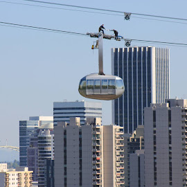 coolest ride in town Portland aerial tram by Randy Glary - City,  Street & Park  Skylines
