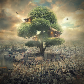 tree house by Even Liu - Digital Art Places ( imagine, photomanipulation, tree, finearts, art, house, surreal, digital, manipulation )