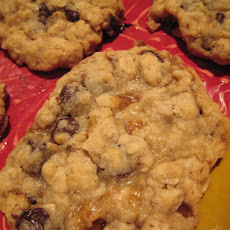 Oatmeal Chocolate Chip Toffee Cookies