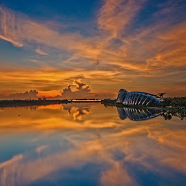 Reflections - The Flower Domes .Singapore by John Chung - Landscapes Travel