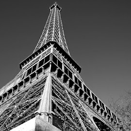 Tour Eiffel ... another point of view by Adrian Pava - Buildings & Architecture Statues & Monuments ( paris, toureiffel, eiffel, tour )