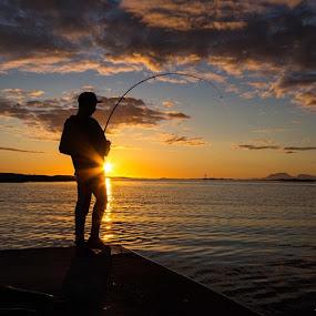 #helgeland2014 @visit_helgeland  Fisketur i sommernatten,  Hamnøya i Vevelstad. by Ann-Inger Babben Aasen - Uncategorized All Uncategorized