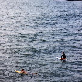 San Diego Surfers by Matt Franklin - Sports & Fitness Surfing ( san diego, surfing, california, action, surf )