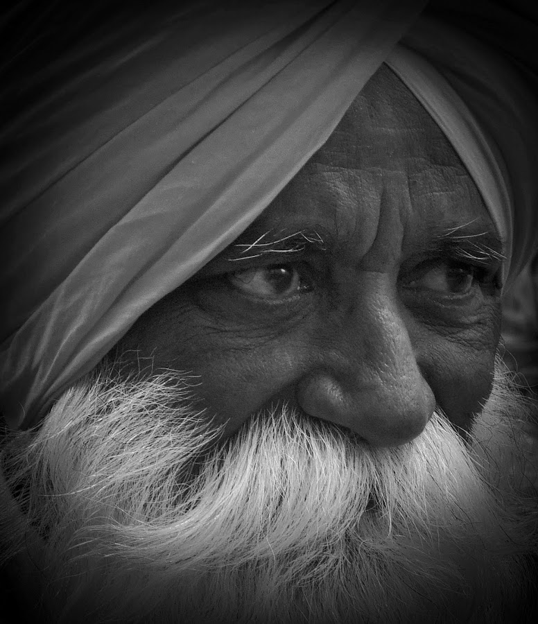 Sikh Man by VAM Photography - People Musicians & Entertainers ( sikh, b&w, beard, portrait, man,  )