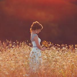 Glow by Shelby Waltz - People Portraits of Women ( field, dress, sunset, flowers, golden hour )