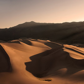 Great Sand Dunes Glow by Greg Gibb - Landscapes Deserts ( sand, dunes, co, desert, colorado, great sand dunes national park, sunrise, landscape, usa )