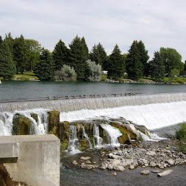 Idaho Falls, Idaho Falls, Idaho by Stephen Terakami - Novices Only Street & Candid ( idaho fals idaho ducks waterfall river )