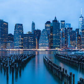Manhattan Skyline by Steve Pace - City,  Street & Park  Skylines ( water, building, skyline, new york skyline, blue hour, manhattan, nyc, new york, cityscape, freedom tower, piers, blue, buildings, east river, city lights, long exposure, nyc skyline, gulls, downtown )