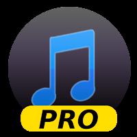 Screenshot of Simple Mp3 Downloader