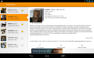 Screenshot of Fido Pet Adoptions