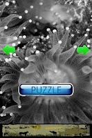 Screenshot of Ocean Puzzle
