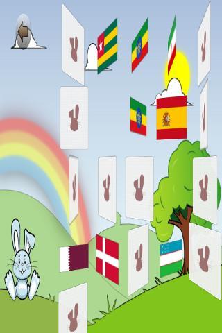 Learn Flags