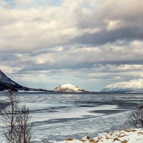 iced bay by Benny Høynes - Landscapes Weather